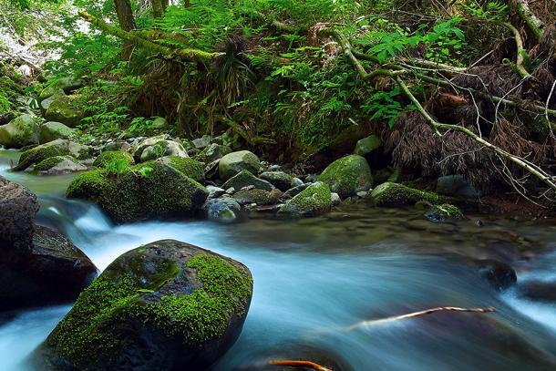 river_00001