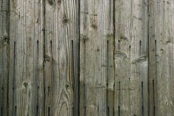 wood-texture_00288