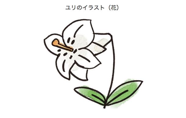 kawaii_29